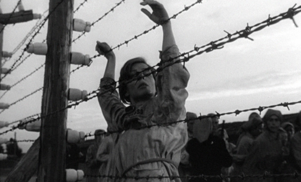reprezentacija-holokausta